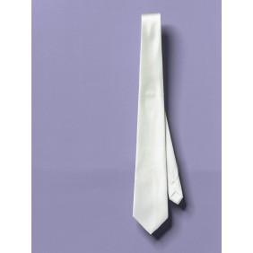 Ponge 10 Silk Tie