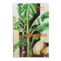 Livre sur la peinture sur soie
